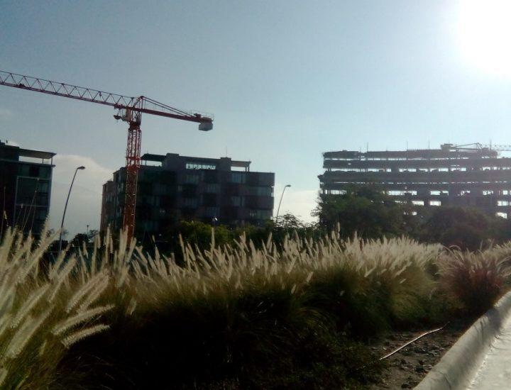 Crece centro urbano de 50 edificios